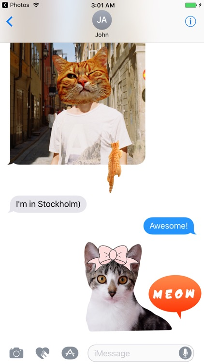 Cat Stickers for iMessage : Cats & Cat Heads screenshot-0
