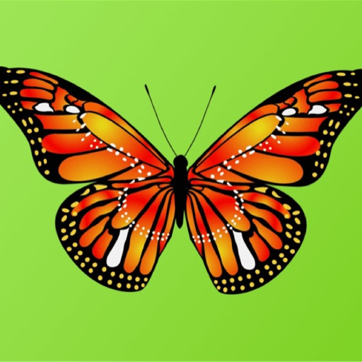 Beautiful Butterfly Sticker Pack