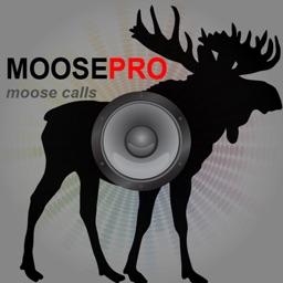 Moose Hunting Calls-Moose Call-Moose Calls Moose