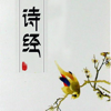 诗经全集 - 中国最早的一部诗歌总集原文翻译鉴赏大全