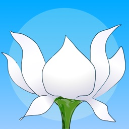 Lotus Bud Meditation Timer