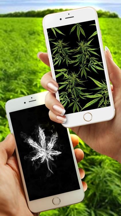 WeedPapers - Original Weed Wallpapers screenshot-4