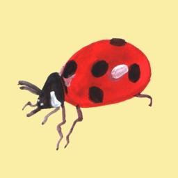 Garden Bugs — by Jessica Olah