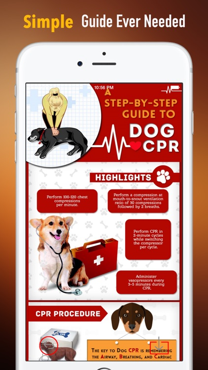 How to Perform CPR on Your Pet:Manual