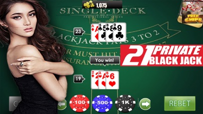 Private 21 Black Jack app image