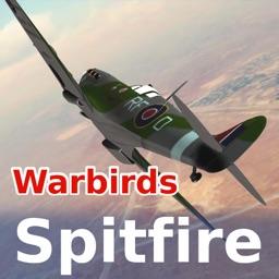 Warbirds Spitfire