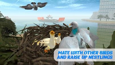Tauben Vogel Überleben Simulator 3DScreenshot von 4