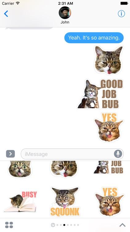 Felis Catus Kitty Sticker