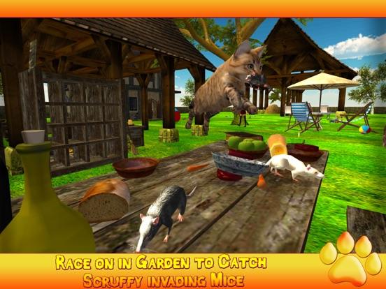 Игра Котенок Cat 3D симулятор - игры Best Cat Mouse