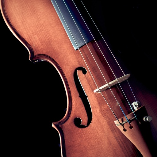 Violin for Beginners - Learn How to Play Violin