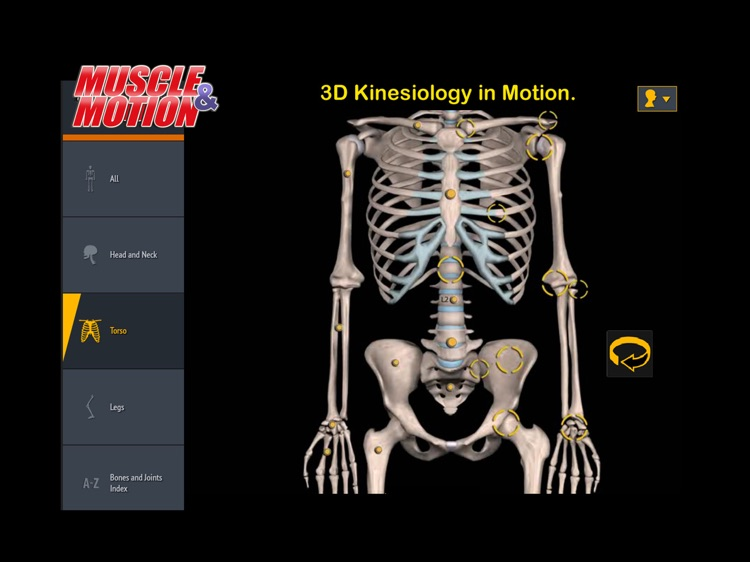 Muscle and Motion Anatomy screenshot-4