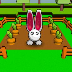 Activities of Rabbit 3D