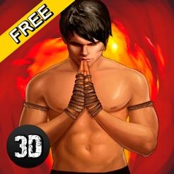 Thai Box Fighting Championship 3D