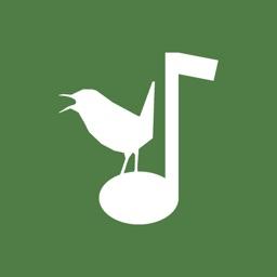 Aves Vox, bird songs, bird calls