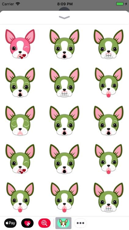 Animated St Pat Boston Terrier