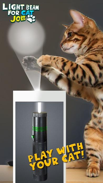 点击获取Light Beam For Cat Joke