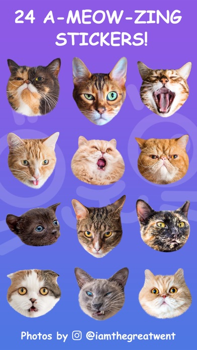 Cat Stamp! Cute Stickers of Cats