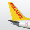 Pegasus: Book Cheap Flights