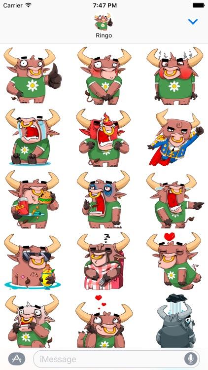 Ringo the Bull