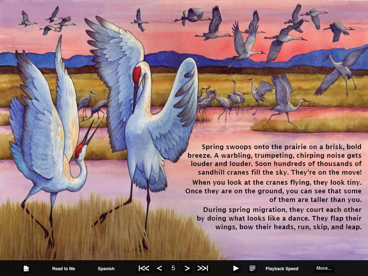 Fun eReader Picture Books screenshot-2