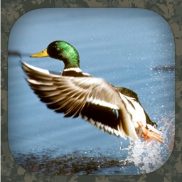 Duck Hunting Calls Apple Watch App