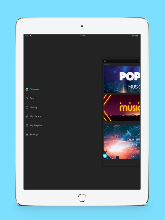 Tubidi - Music Video Player-ipad-4