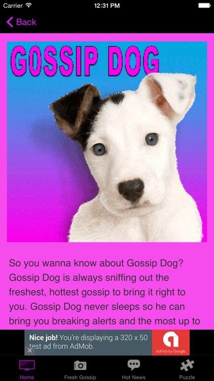 Gossip Dog