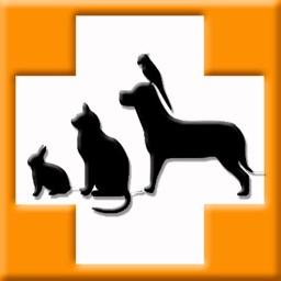 Pet's Veterinary Records