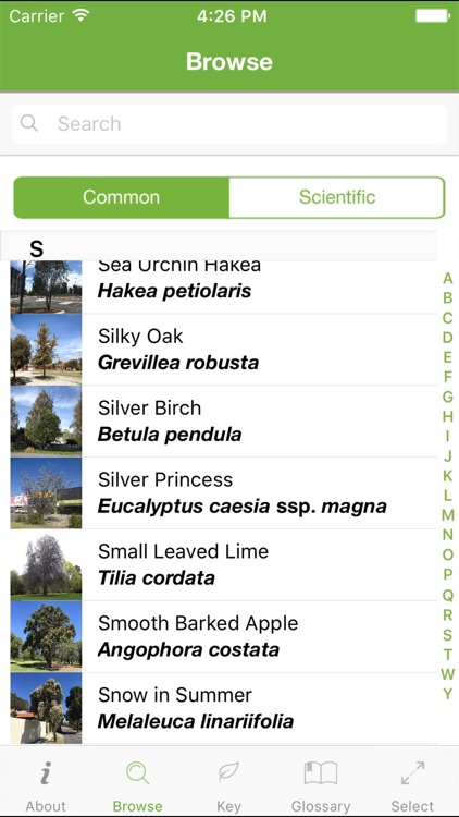 Tree ID Australia screenshot-4