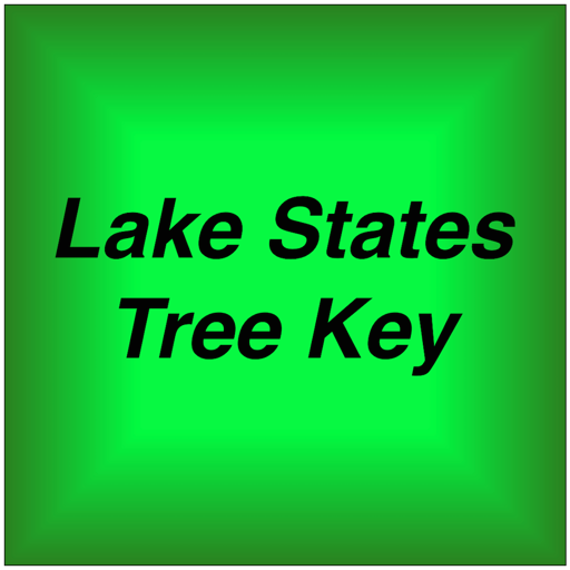 Lake States Tree Key