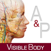 Anatomy & Physiology: Body Structures and Function
