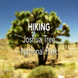 Hiking Joshua Tree N. P.
