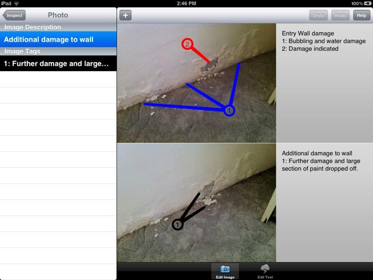 Pocket Reporter Pro for iPad screenshot-4