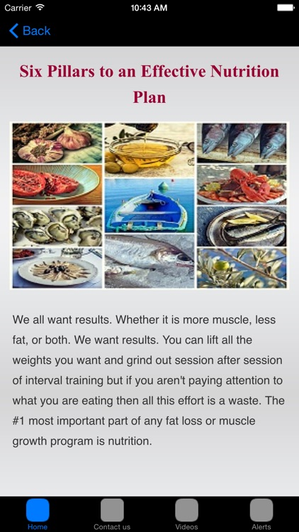 Free : Nutrition Facts & Nutritional Information