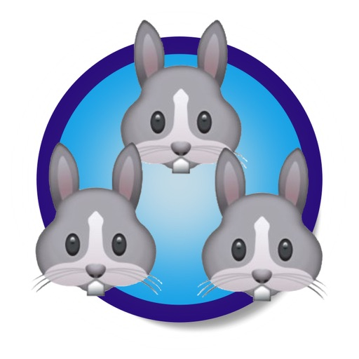 Bonded Bunnies