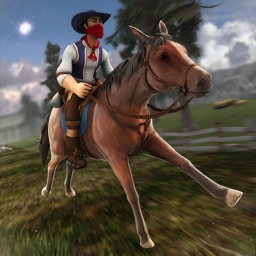 My War Horse: The Horse Riding Sport Competition
