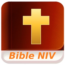 New International Version Bible (Audio)