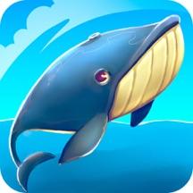 Whale or Shark