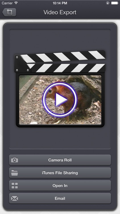 Video Crop & Zoom - dynamic crop, zoom, and rotation in your videos screenshot-4