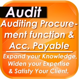 Audit of Accounts Payable & Procurement Process