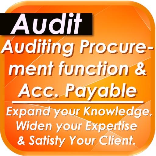 Audit of Accounts Payable & Procurement Process