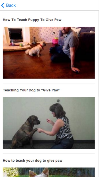 How To Train Dog - Canine Advice, Tips and Tutorials screenshot-4