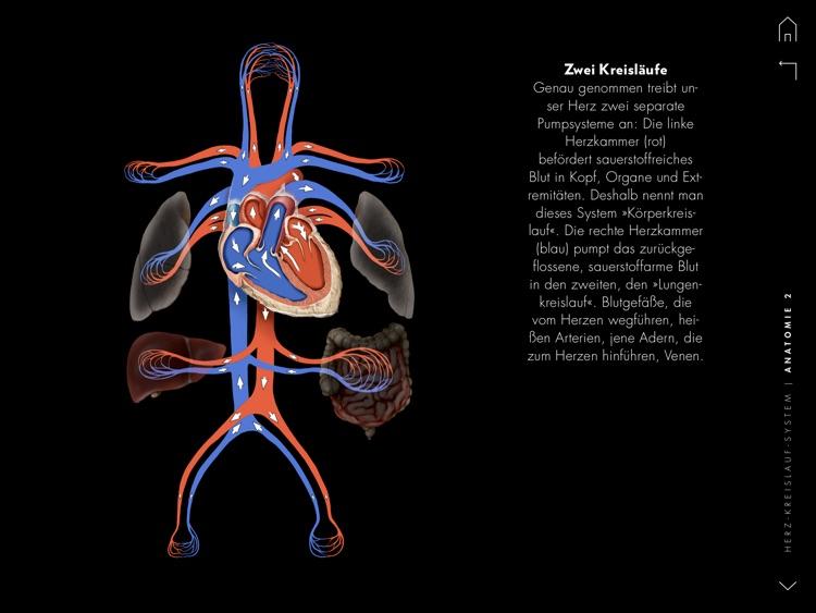 Herz und Kreislauf - GEO WISSEN GESUNDHEIT screenshot-3