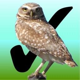 Birdwatcher's Diary
