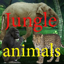 Sounds of Jungle