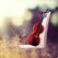 小提琴视频教程-古典音乐世界名曲节奏大师小提琴自学神器