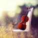 5.小提琴视频教程-古典音乐世界名曲节奏大师小提琴自学神器