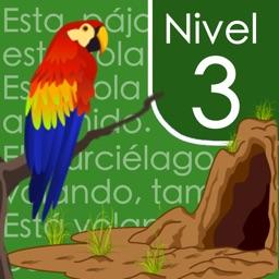 Spanish Reading Comprehension Level 3