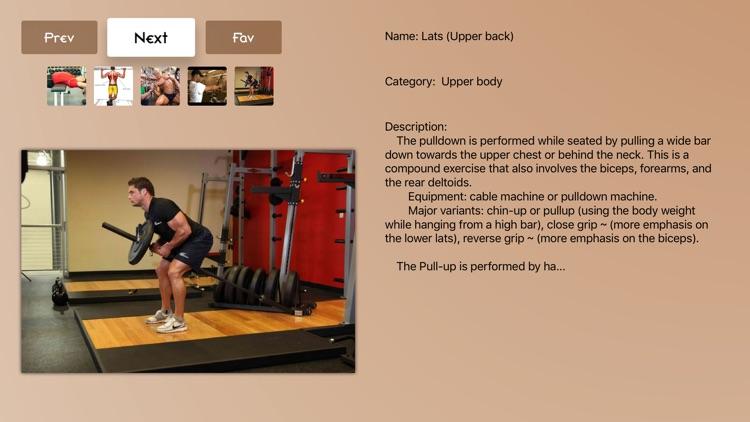 Body Building Info