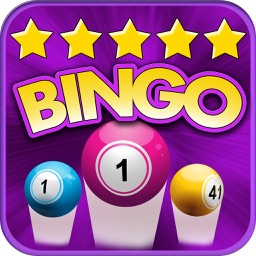 Top Bingo - Bash & Fun